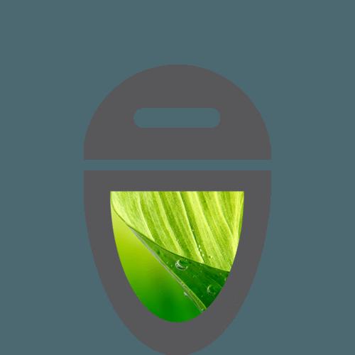 Logo Designer in Ascot