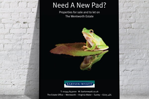 Estate Agent poster design